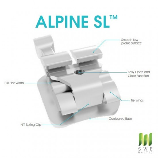 Alpine SL Brackets